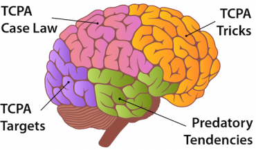 An illustration of human brain with the different sections labeled with terms relevant to TCPA compliance